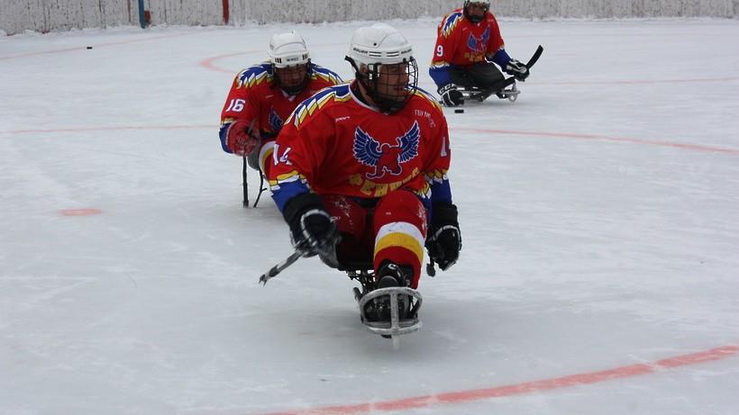 Более 32 тыс инвалидов в Подмосковье занимаются спортом на профессиональном уровне