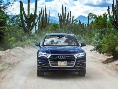Кактус-драйв. Формула амбиций нового Audi Q5