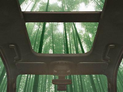 Ford будет строить свои автомобили из бамбука