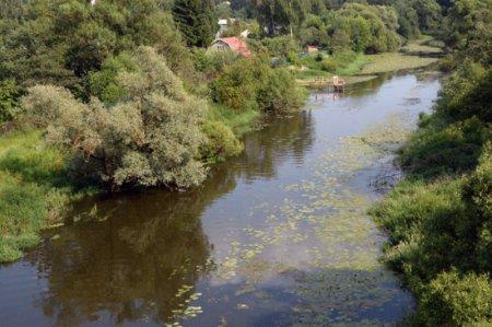 Мальчишка утонул в реке Малая Истра в Подмосковье