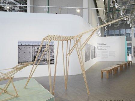 Музей «Гараж» берет Астану «скелетами» и исследованием архитектуры модернизма