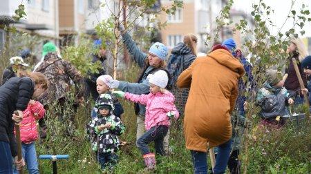 Свыше 700 деревьев высадили в Красноармейске на акции «Наш лес. Посади свое дерево»