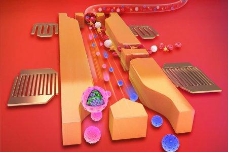 Звуковые волны позволят более эффективно исследовать образцы крови