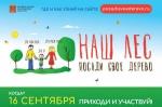 Места проведения акции «Наш лес. Посади свое дерево» в Ступинском районе