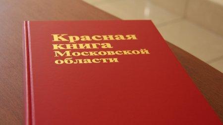 Бурый медведь, черный аист и суслик: кто занесен в Красную книгу Подмосковья