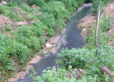 Минэкологии поддержит постановить проблема по очистке запруды на реке Баньке