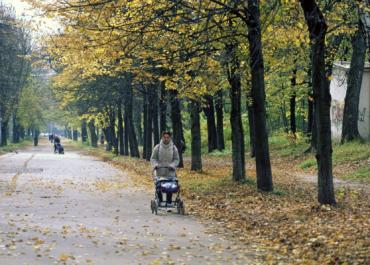 В 2019 году парк Победы в Орехово-Зуеве встретит своих посетителей обновленным
