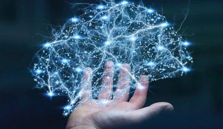 Google сделала бесплатным курс по изучению технологий машинного обучения