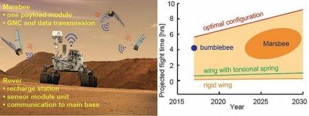 NASA разрабатывает робо-пчел для исследования Марса