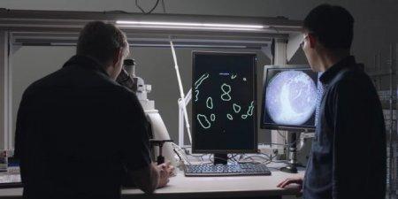 В Google создали микроскоп дополненной реальности для диагностики рака