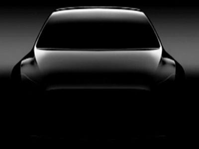 Названа дата старта производства кроссовера Tesla Model Y