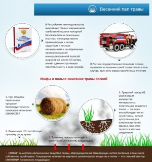 Опасность пала сухой травы