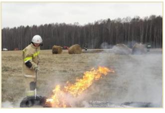 Сотрудники Главного управления МЧС России по Московской области напоминают: в Подмосковье запрещены палы травы!