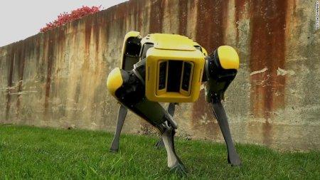 Boston Dynamics начнет продавать роботов-собак в следующем году