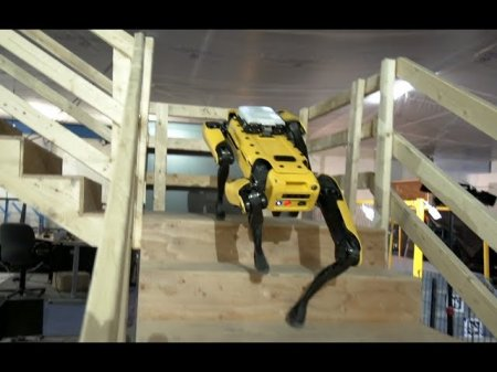 Знаменитый робот SpotMini от Boston Dynamics поступает в открытую продажу