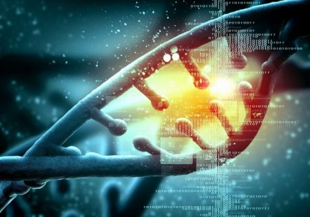С помощью редактора генома CRISPR удалось воссоздать стадии развития меланомы