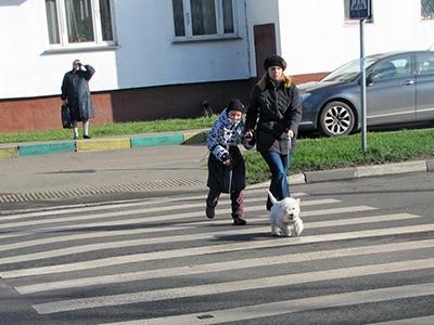 Пешеходы притормозят водителей в городах