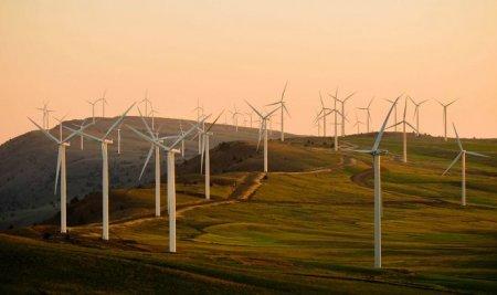 Проект «Arcadia Power» поможет снизить расходы на электроэнергию на 30%
