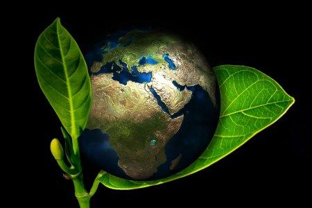 Можно ли превратить половину планеты в заповедник?