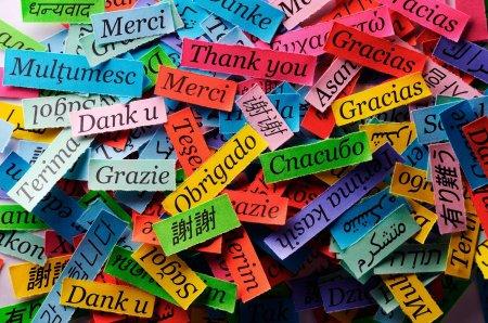 На планете 6000 языков. Как и почему они появились?