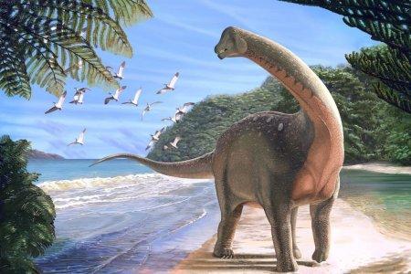 В России найдены останки самого большого динозавра в истории