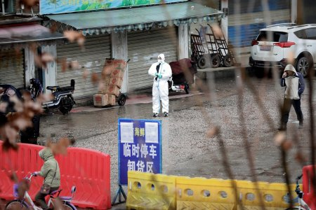 Китай закрыл 13 городов из-за коронавируса, а возможной причиной эпидемии называют змей