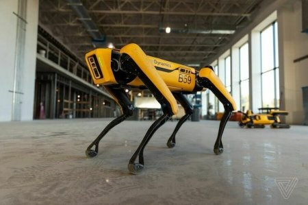 Роботы Boston Dynamics помогают в борьбе с коронавирусом в США